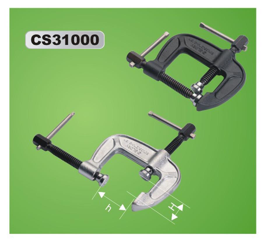 CS31000-2.png